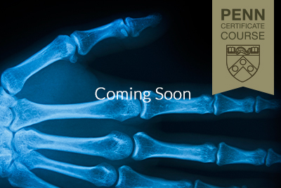 Pennmed gallery images xray